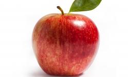 Zelfs bij Apple verdienen proposities een mooie naam
